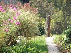 Solid rustic wood fence extending the line of a path