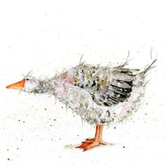 Goose Scruffy Coaster Recycled Glass by TheSkinnyCardCompany Watercolor Animals, Watercolor Cards, Watercolor Paintings, Watercolours, Cute Images, Cute Pictures, Duck Art, Chicken Art, Bird Artwork
