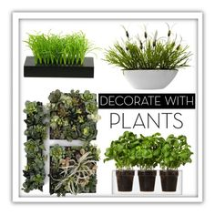 """""""Green Thumb"""" by patricia-dimmick ❤ liked on Polyvore featuring interior, interiors, interior design, home, home decor, interior decorating, Boskke, Nearly Natural, plants and planters"""