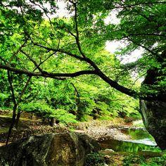 Beopjusa, Songisan National Park, South Korea