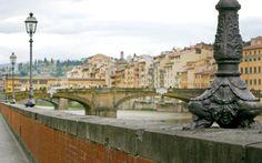 Leoni: i custodi di Firenze
