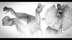 "Dilophosaurus (aka Spitter) for #JurassicPark concept art by illustrator Mark ""Crash"" McCreery  Crash McCreery is a professional illustrator who works on Hollywood films like Jurassic Park (1983), Batman Returns (1992) and Galaxy Quest (1999).  http://filmsketchr.blogspot.com/2013/07/amazing-jurassic-park-behind-scenes.html http://filmsketchr.blogspot.com/search/label/Jurassic-Park"