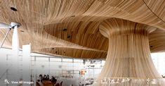 Internal Ceilings, Acoustic Timber Panels, Acoustic Wood Ceilings