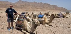 Carry on Camel #scuba #diving #dive #holiday #vacation #trip #travel #dahab #BlueHole #RedSea
