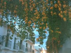 Nerja again voted one of the 10 most charming towns in Spain