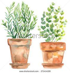 watercolor sketch of terra cotta pot - Google Search