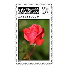 All Occasion Floral Rose Red Postage Stamp