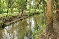 el Paseo sobre el río Louro, Porrino