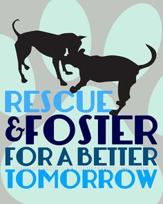 Rescue and Foster Dog Quote Wall Decor Choose Fine Art, Gallery Wrapped Canvas or Bamboo Mount