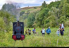 Net Photo: CFI - Calea Ferata Ingusta Steam at Abrud, Romania by Jean-Marc Frybourg Felder, Romania, Trains, This Is Us, Places, Train, Lugares