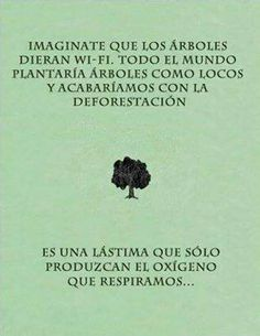 Imagine that trees emitted wi-fi. The whole world would plants trees like crazy and end deforestation. It's a shame their only production is oxygen for breathing. Wi Fi, Great Quotes, Inspirational Quotes, Albert Schweitzer, Words Quotes, Sayings, Love The Earth, Frases Tumblr, Spiritual Enlightenment