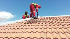 Paramount Roofing specialises in Residential and Factory Roofs Residential Complex, Painting, Painting Art, Paintings, Painted Canvas, Drawings