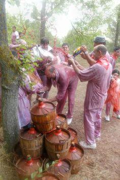 La Batalla del Vino (Haro, La Rioja ) | Find flights to here with www.lowcosthero.com
