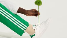 Kermit, Stan Smith, Editorial Fashion, Adidas Sneakers, Lady, March, Stan Smith Style, Adidas Shoes, Mac