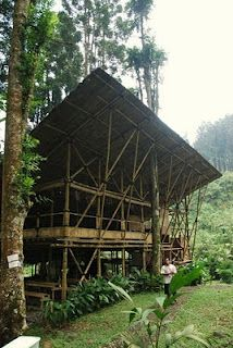 bamboo house with grass roof
