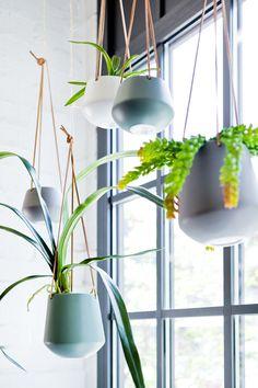 Modern und praktisch – die tollen Blumenampeln aus Keramik sind die perfekte Lösung für kleinere Grünpflanzen.  Schön und platzsparend, gibt es sie in 4 Farrben und zwei Größen, immer mit der tollen Lederaufhängung.  Länge: 66 cm  Durchmesser: 12,2/ 13,5 cm  Höhe: 9,5/ 15 cm Makeup For Green Eyes, First Home, Candlesticks, Most Beautiful Pictures, Told You So, About Me Blog, Modern, Living Room, Eye Makeup