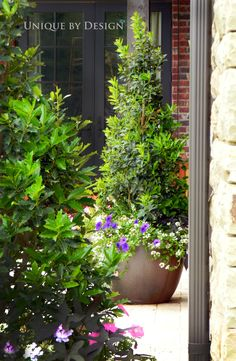 Potted plantings bring the garden up onto the patio with you!