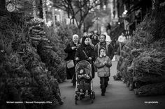 A Syrian family, escaping their ravaged homeland, makes a new life in New York City