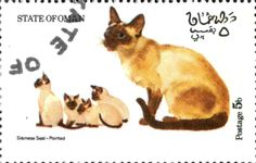 Stamp: Siamese Seal-Pointed (Cinderellas) (Oman (State of)) Col:OM 1973-09/3
