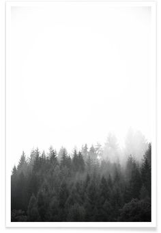 Walk Through The Forest - Premium Poster Portrait