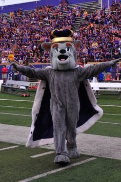 Welcome to my castle and another year of JMU football!