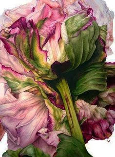 http://agardenbydesign.blogspot.de/2014/01/peony-iris-lily.html?utm_source=feedburner