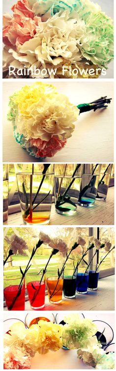 Pretty DIY rainbow flowers for mom -- awesome gift idea for spring. This would be great for the kids at work when learning about colors/spring.