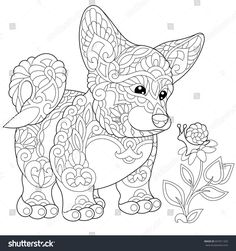Coloring page of cardigan welsh corgi puppy. Freehand sketch drawing for adult antistress colouring book with doodle and zentangle elements.