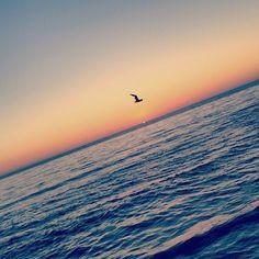 Fly like a bird - Rhythm of Our Lives Blog @ Rhythmofourlives.com