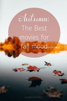 Enjoy these fantastic movies which are, in my opinion, perfect for a cosy and warm autumn evening or night. Warm Autumn, Fall Winter, The Fall Movie, Good Movies, Cosy, Good Things, Seasons, Lifestyle, Night