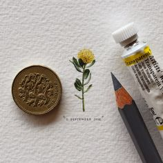 Miniature 'Postcards for Ants', by Lorraine Loots (via NEST OF PEARLS)