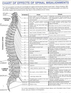 chart of effects of spinal misalignment.