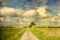 Springtime in the Fields by Sandra Roeken  Colour photograph (Giclée)  IMPORTANTIMPORTANTIMPORTANTIMPORTANTIMPORTANT The delivery to Australia is solely possible as rolled canvas WITHOUT stretcher!!!! due to the   ...    #Kunst #Art #Malerei #Painting
