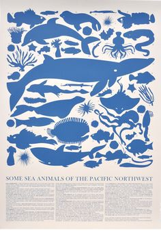 Banquet Atelier & Workshop 'Sea Animals of the Pacific Northwest' Wall Art Animal Posters, Sea Creatures, Pacific Northwest, North West, Art Images, Screen Printing, Art Prints, Wall Art, Artwork