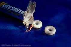 """Lifesaver"" | Photograph by Audrey Heller, 2011"
