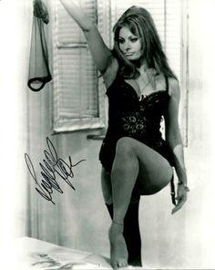 Sophia-Loren-taking-it-off-black-white-signed-8X10-photo