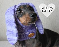 Ravelry: Mini Dachshund Rabbit Hood pattern by Valya Boutenko Crochet Dog Sweater, Dog Sweater Pattern, Hoodie Pattern, Sweater Patterns, Knitted Hat, Dachshund Clothes, Mini Dachshund, Pet Clothes, Dachshund Costume