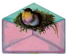 bird in envelope   thanks Graphics Fairy