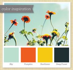 Light blue, Orange, Yellow and Green Color Palette by Sarah Hearts.but blue instead of dark green? Colour Schemes, Color Combos, Color Patterns, Green Colour Palette, Green Colors, Navy Color, Colour Palettes, Beige Color, Navy Blue
