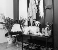 Mørk vegg - Jotun dempet sort. Ikea Pinnig innredning og speil