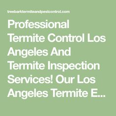 Professional Termite Control Los Angeles And Termite Inspection Services! Our Los Angeles Termite Experts Are Here to Help! Termite Inspection, Termite Control, Pest Control Services, Math, Math Resources, Mathematics