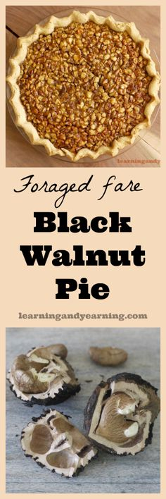 """You don't have to grow black walnuts to enjoy black walnut pie. In many parts of the U., they can be foraged for free. This """"real food"""" recipe uses no refined sugar and is so delicious. Foraging for food is fun and delicious! Winter Desserts, New Year's Desserts, Single Serve Desserts, Desserts For A Crowd, Delicious Desserts, Holiday Desserts, Dessert Party, Party Desserts, Hot Fudge Cake"""