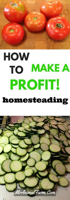 Want to make a profit homesteading?  These easy to use worksheets help track the money you make homesteading.