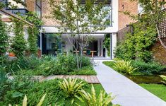 An urban garden: a small west London garden designed by Adolfo Harrison - Gardens Illustrated What Is Landscape, Landscape Design, Winchester, Outdoor Areas, Outdoor Structures, Outdoor Paving, Specimen Trees, London Garden, Building A Deck