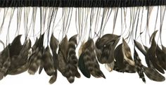 """Stripped Coque Fringe With Bias Chinchilla 12"""" wide"""