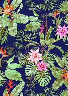Si os apetece sumergiros en una selva tropical estas imágenes os van a ayudar Enlaces: http://therhapsodyedit.tumblr.com/post/1172020187...