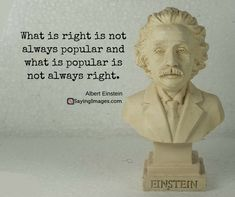 quotes of albert einsteinYou can find Historical quotes and more on our website.quotes of albert einstein Famous Einstein Quotes, Albert Einstein Quotes, Quotes By Famous People, People Quotes, Famous Historical Quotes, Wise Quotes, Great Quotes, Inspirational Quotes, Lyric Quotes