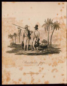 Reise nach Brasilien in den Jahren 1815 bis 1817. Rar_9116