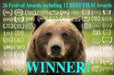 Wildlike Spring Festivals & 13 Best Film Awards!