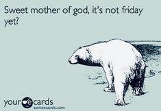 #pattibokowski #ninefrogs #quotes Tgif Funny, E Cards, Polar Bear, Motivation, Memes, Quotes, Life, Sayings, Quotations